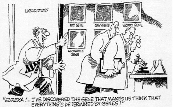 """Dois significados de """"gene"""" e o determinismogenético"""