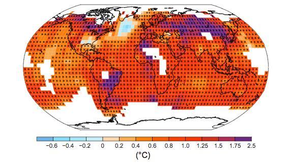 As plantas e as mudanças climáticas: Como sobreviver em um ambiente em rápida e constantetransformação?