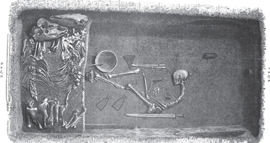 A História recontada peloDNA