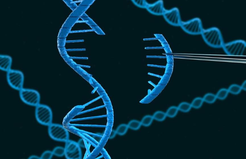CRISPR-Cas: o corretor ortográfico degenomas