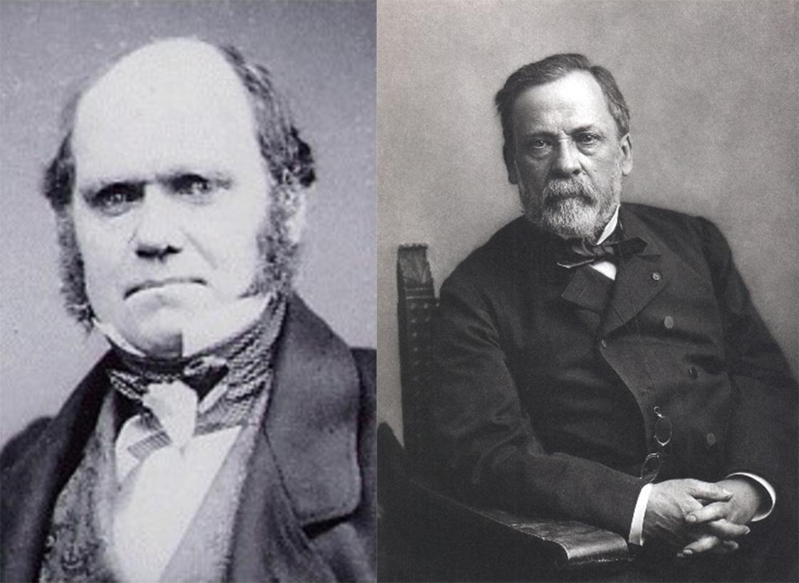 O darwinismo e a transformação damedicina