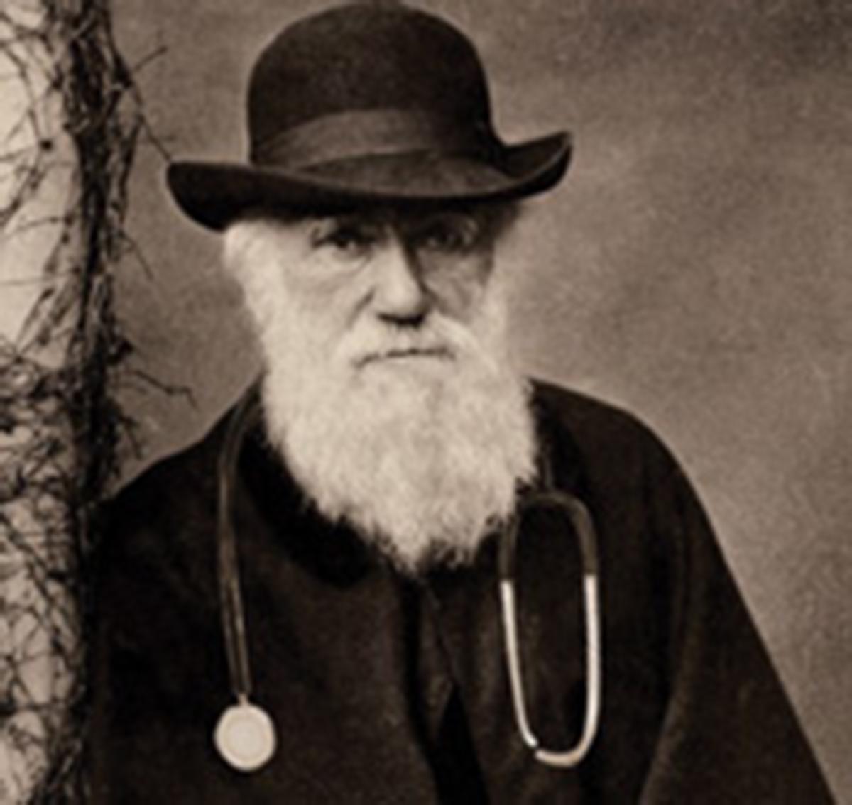 Quando a evolução e a medicina seencontram