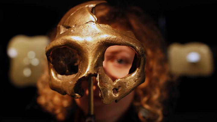 Denny: a menina meio Neandertal, meioDenisovana