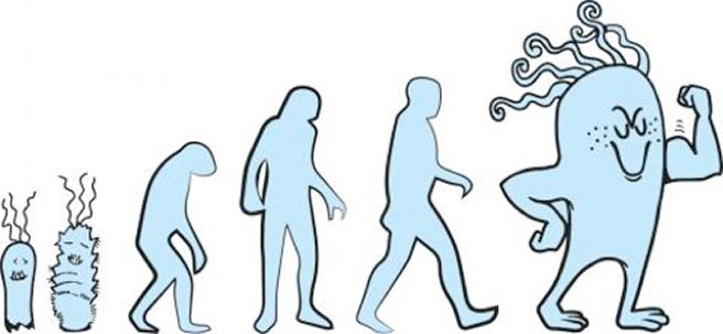 Observando a Evolução em temporeal
