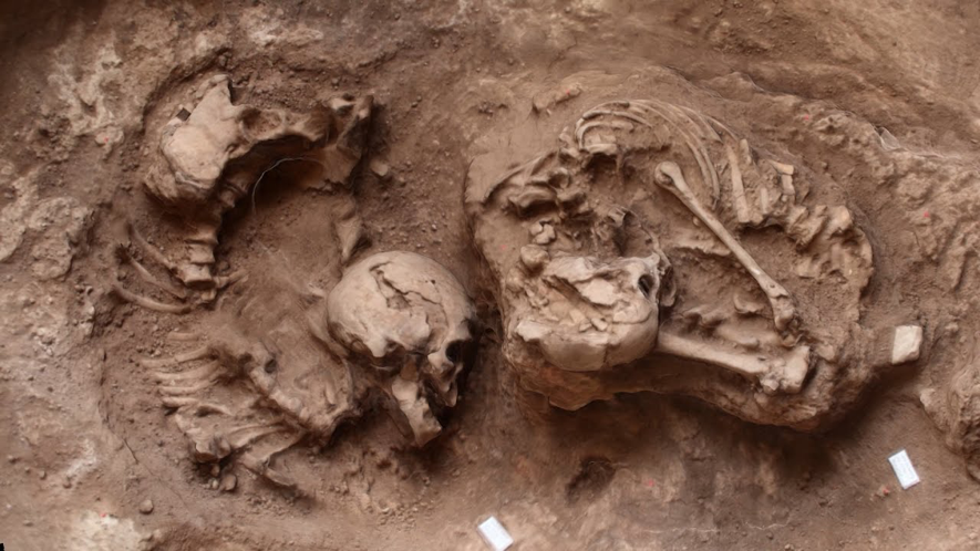 Arqueogenética do Povo deLuzia