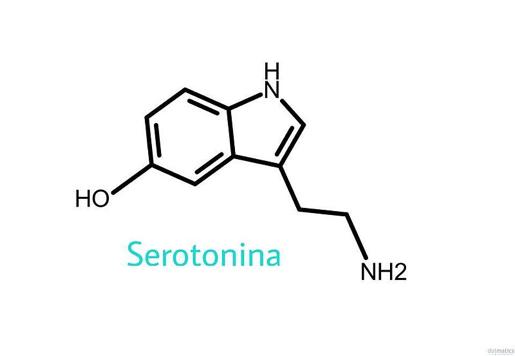 Uma nova luz sobre o papel da serotonina naherança