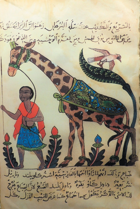Filósofo muçulmano descobriu teoria de Darwin mil anos antes do naturalistainglês?!