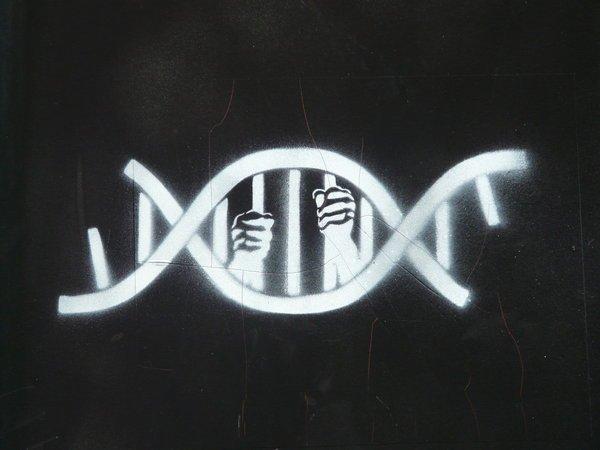 A genética pode ser uma armapolítica?