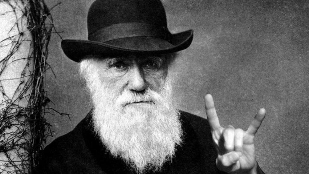 Glória a Darwin nasalturas