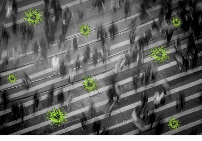 Desinformação, o falso dilema saúde-economia e o paradoxo do isolamentosocial